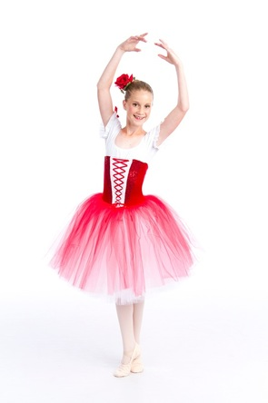 Intermediate Ballet Dancer at Wasatch Ballet